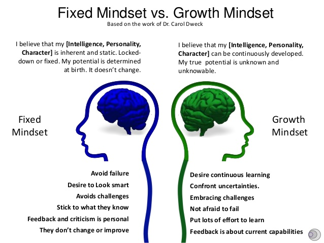 Fixed vs. Growth Mindset | The Collegiate Call